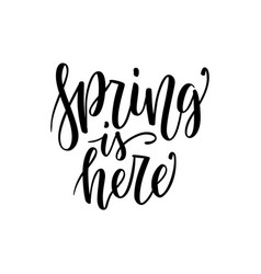 spring is here - hand drawn inspiration quote vector image vector image