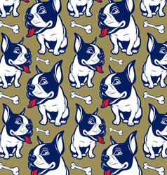 background cartoon style french bulldog smile vector image