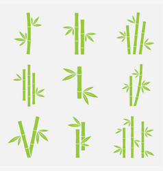 bamboo icon set vector image