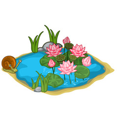 Beautiful lake with snail reeds and lilies vector
