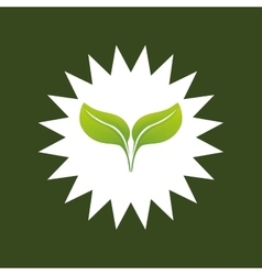 Leaves ecology plant vector