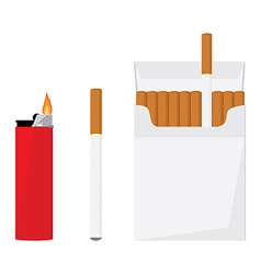 Cigarette pack and lighter vector