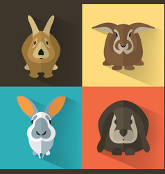 Easter bunny collection vector