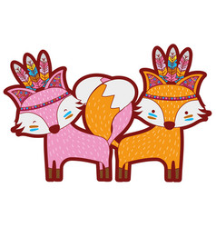 Line color fox animals couple together with vector