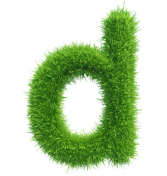 Small grass letter d on white background vector