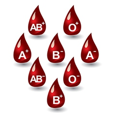 Blood groups vector