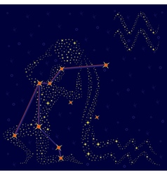 Zodiac sign aquarius over starry sky vector