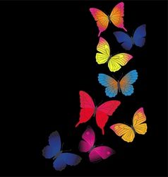 Butterfly Retro background vector image vector image