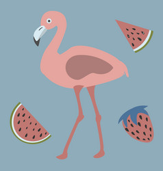 Pink flamingo with watermelons and strawberry vector