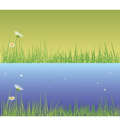 Field grass day and evening vector