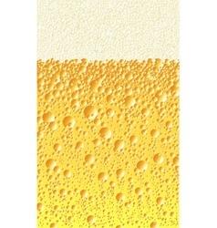 Alcoholic beverage vector