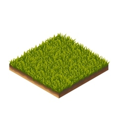 Grass pattern isometric vector