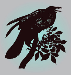 The raven vector
