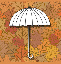 umbrella on background with oak leaves vector image