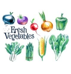 Vegetables logo design template fresh vector