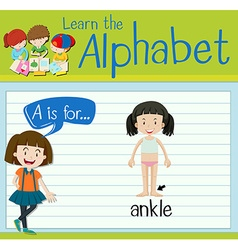 Flashcard letter a is for ankle vector
