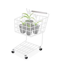 A set of dracaena plant in a shopping cart vector