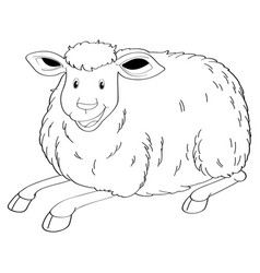 Drafting animal for cute sheep vector