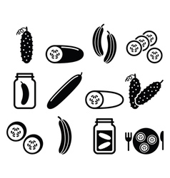 Cucumber pickled cucumber slices - food icons vector