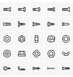 Screws and nuts icons vector image