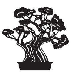 Bonsai tree silhouette vector