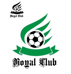 Football or soccer symbol with green and black vector image