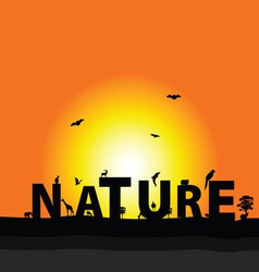 nature color vector image