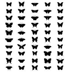 silhouettes of butterflies 2 vector image