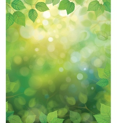 Spring green leaves vector