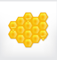honeycomb with flowing honey vector image