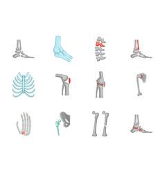 human bones icon set cartoon style vector image