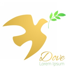 Dove silhouette Logo template vector image vector image