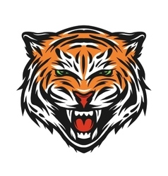 Aggressive tiger face vector