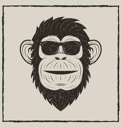 Monkey in sunglasses grunge t-shirt vector