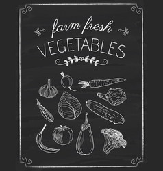 vegetables doodle on the black board vector image vector image