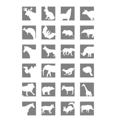 Icon mammals vector