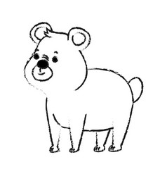 Bear cute animal cartoon icon image vector