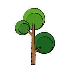 green tree foliage nature flora botanical vector image