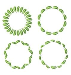Palm leaf frame set vector
