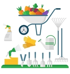 Wheelbarrow and garden equipment vector