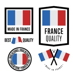 Made in France label set national flag vector image