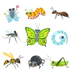Insect cartoon images collection vector