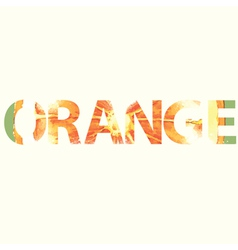 Orange sign vector
