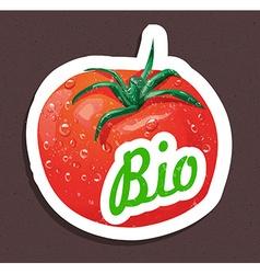 Bio tomato tag vector image