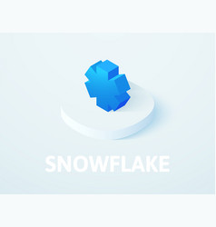Snowflake isometric icon isolated on color vector