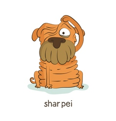 Shar pei dog character isolated on white vector