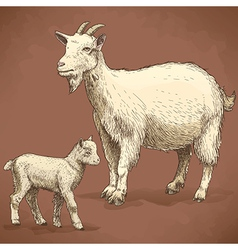 Engraving goat and kid retro vector
