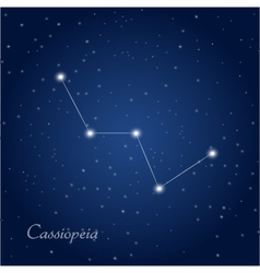 Cassiopeia constellation vector