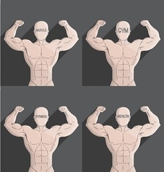 male muscle grey gym health fitness symbol vector image