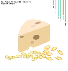 Cheese with fat protein vitamin b2 b12 and a vector